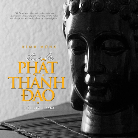 PHAT THANH DAO 10